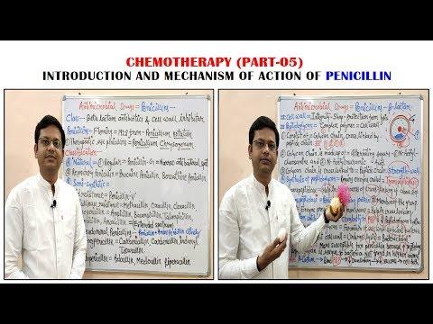chemotherapy-of-antibiotics-(part-05)-=penicillin-(01)=-introduction-&-classification-(hindi)