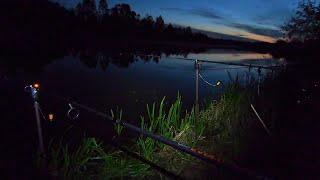 Ночная ловля сома Забрались на необитаемый остров Что за следы мы нашли
