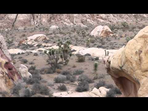 USA - Nevada - Whitney Pocket