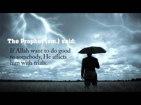 life hadith