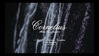 "Cornelius ""いつか / どこか - Sometime / Someplace"" Live! at SINGHA LIGHT Live Series Vol 3.3"
