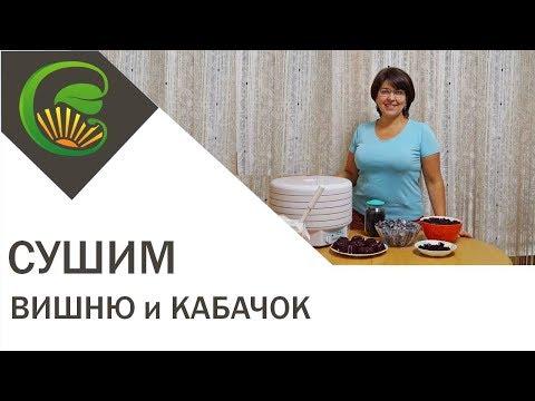 Вишня вяленая, цукаты из кабачка и мармелад на сушилке