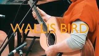 Wallis Bird - Control (Live in Studio 8)