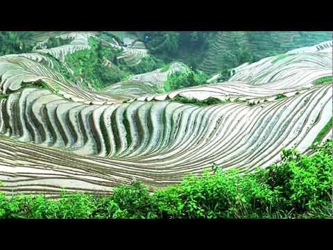 Dazhai Spring Planting (大寨春耕) - 2006 (China Works Series)