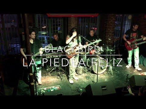 Blackbird Band en vivo