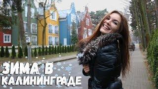 Погода зимой в Калининграде. Новая достопримечательность в Светлогорске