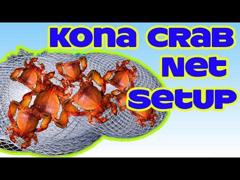 Kona Crab Nets Setup | Spanner Crabs | Fishing In Hawaii | Hawaii Fishing  | Crabbing In Hawaii