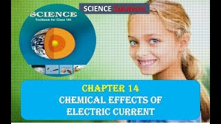 8 SCIENCE NCERT SOLUTIONS CHAPTER 14