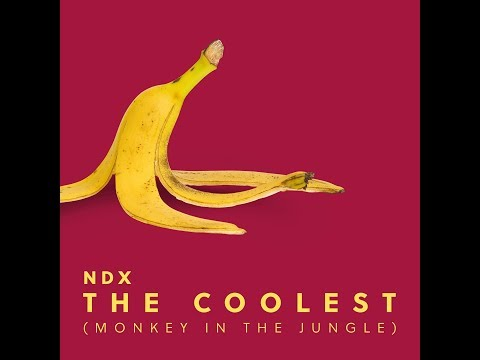 NDX - THE COOLEST (MONKEY OF THE JUNGLE) Lyrics Video