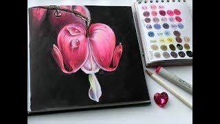 Скетч-Урок:Ботаническая иллюстрация маркерами. Цветок Дицентра.