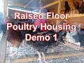 Kienyeji chicken poultry house Raised floor poultry house for chicken | chicken poultry house
