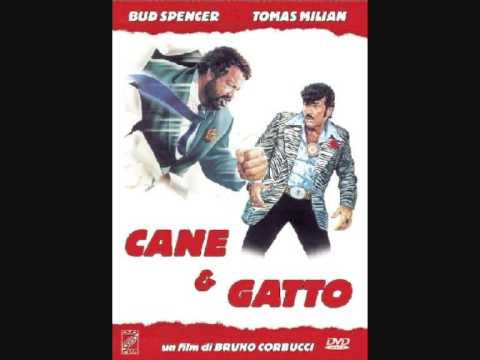 Theme from Cane e Gatto(Cats and Dogs) Bud Spencer HQ