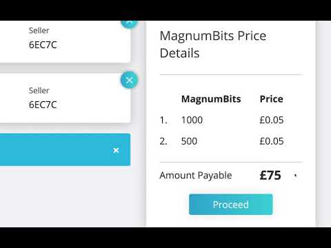 How To Buy MagnumBits | Step 2