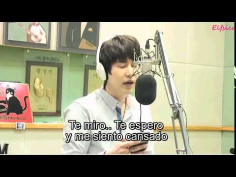 Because It's You by Cho Kyuhyun (Sub español) Sukira 141001