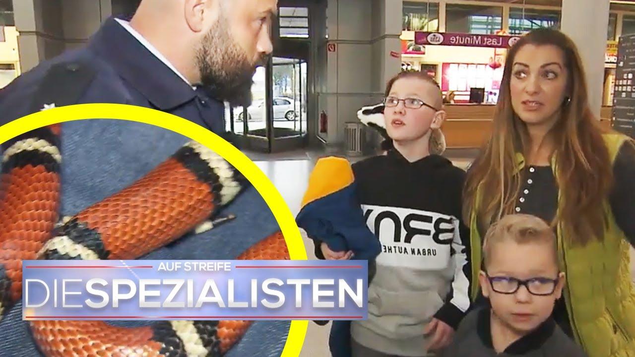 Download Giftige Schlange im Gepäck! Panik am Flughafen | Die Spezialisten | SAT.1