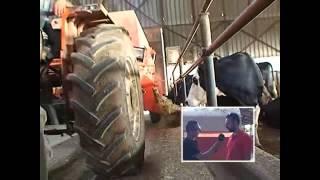 Neden bir çiftlikte gübre sıyırma sistemi olmalı?