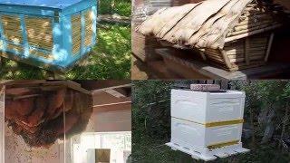 Ульи пчелы пчеловоды(мой сайт http://samodelpshelovod.ru Ульи пчелы пчеловоды обзор ульев по разным странам какие бывают ульи как и с чего..., 2016-03-04T10:15:10.000Z)