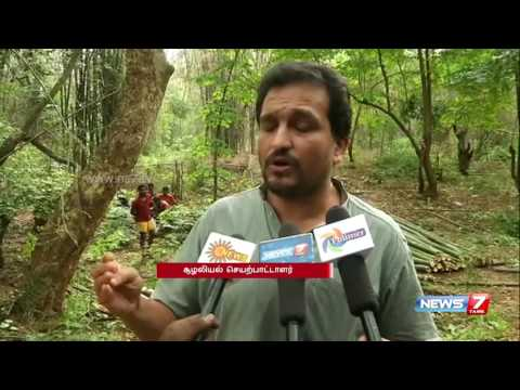 Piyush Manush complains against fresh bamboo auction in Salem | News7 Tamil