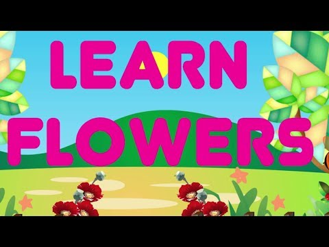 Learn Flowers Name For Kids | Flowers Name In English | Kids Learning Videos & Kindergarten Videos