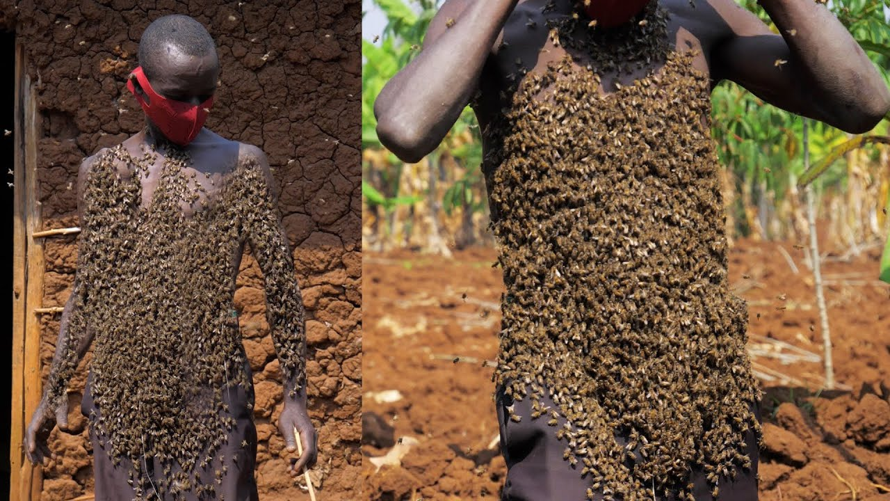 Download A Man Covered With Thousands Of Bees On His Body : EXTRAORDINARY PEOPLE