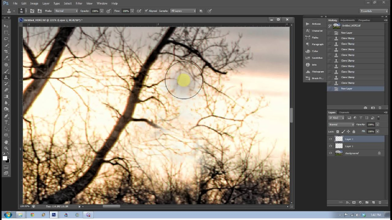12 Tips for Mastering the Clone Stamp Tool in Photoshop