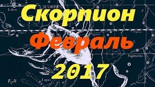 Гороскоп для Скорпиона на февраль 2017 года