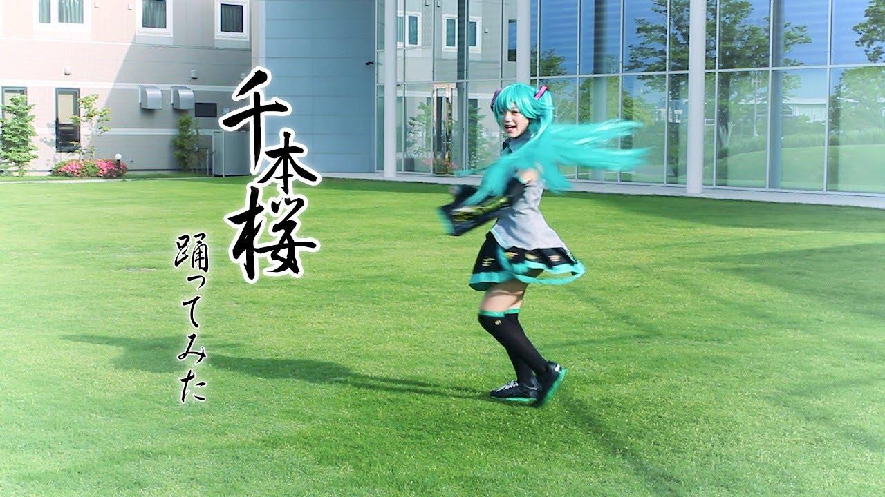 【玉城ひなこ】千本桜【踊ってみた】