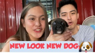NEW LOOK (meet our new dog) LarsXClyde