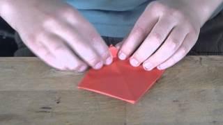 origami lotus Thumbnail