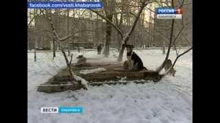 Вести-Хабаровск. Бродячие собаки нападают на школьников