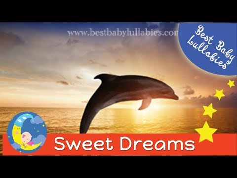 LULLABIES Lullaby For Babies To Go To Sleep GROWN UPS & Baby Lullaby Songs Go To Sleep
