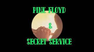 LA Goodbye PINK FLOYD SECRET SERVICE Live