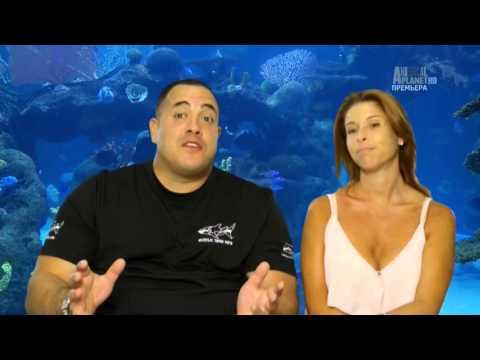 аквариумный бизнес 1 серия коллекторских