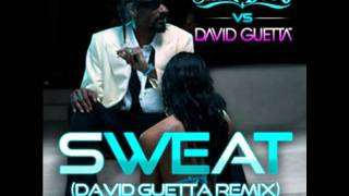 Download Snoop Dogg vs. David Guetta - Sweat (Chipmunks Remix) MP3 song and Music Video