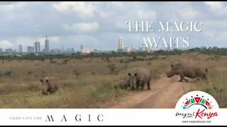 #TheMagicAwaits #LiveTheMagic #MagicalKenya