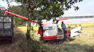 combine harvester in indonsia and china