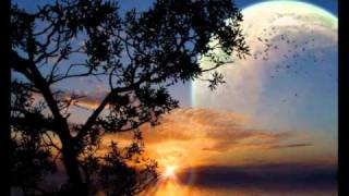 Cygnus X - Superstring (Rank 1 Remix)