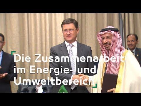Die Zusammenarbeit im Energie- und Umweltbereich