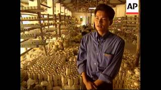 VIETNAM: MARKET ECONOMY