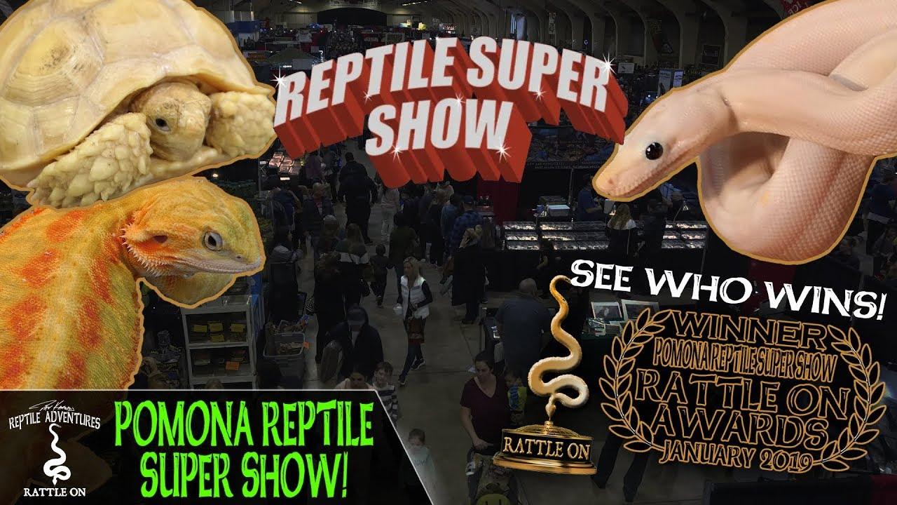 POMONA REPTILE SUPER SHOW! (January, 2019)