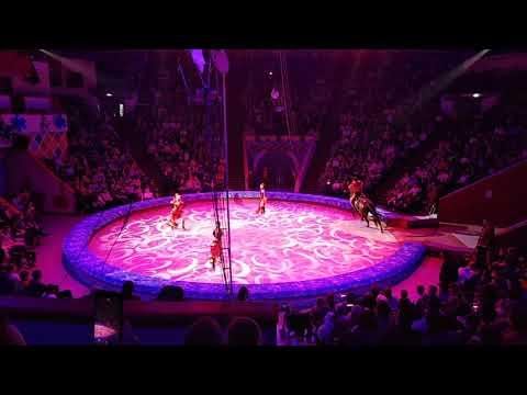 Цирк 2020 в Казани