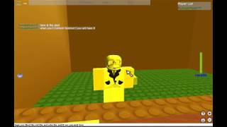 How To Get The Riddling Skull In Roblox:Super Nostlagia Zone