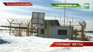 Ни дороги, ни уличного света, ни газа: в таких условиях приходится обитать жителям села Пермяки. ТНВ