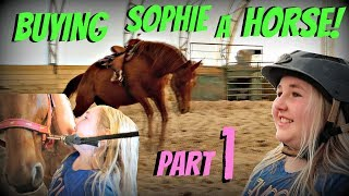 buying sophie a horse part 1 day 128 050818