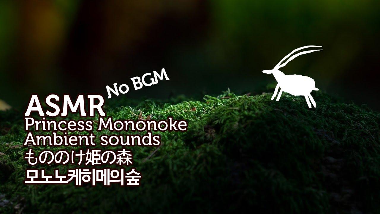 ASMR No BGM Princess Mononoke 3D Ambient Sounds | 모노노케히메의 숲 입체 음향 | もののけ姫の森 | 원령공주