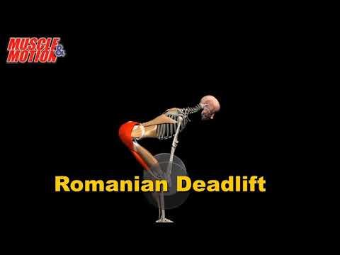 Румынская становая тяга. Самое короткое руководство