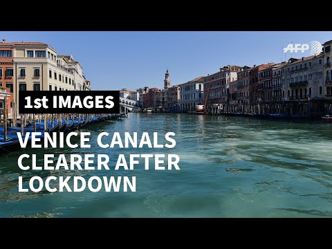 Venice canals clearer due to lack of tourists and traffic | AFP