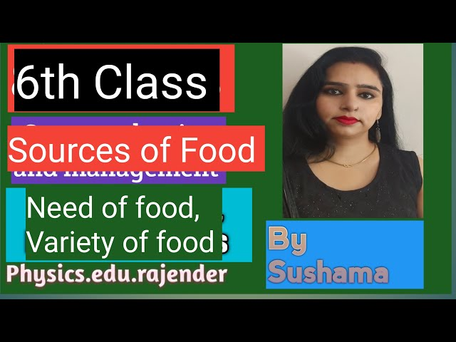 Source of food 6th Science