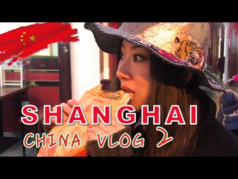 CHINA Vlog 2. Shanghai  Travel + Street Food , 10 days in  Chinese New Year Version| 中国 上海 旅游| 过年胖