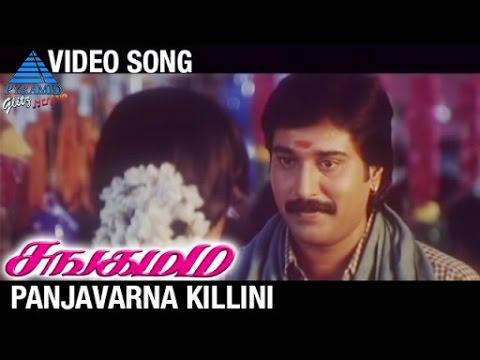 Sangamam Tamil Movie Songs | Panjavarna Killini Video Song | Rahman | Vindhya | AR Rahman